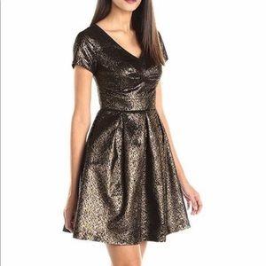 Beautiful Metallic & Black Dress!